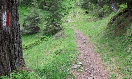 I Comuni di Cene e Colzate ricevono finanziamenti regionali per migliorare i loro sentieri montani