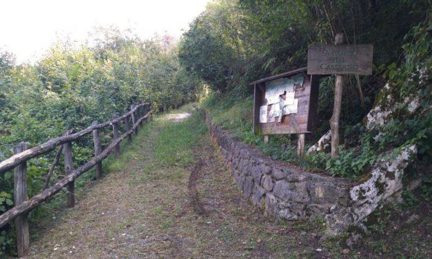 Il Parco del Castagno tra passato, presente e futuro