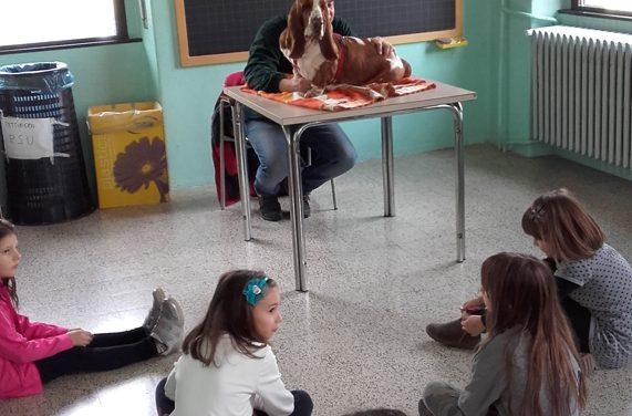 """Vera Bonaita illustra le potenzialità della """"Pet Therapy"""""""