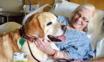 """""""Hic et Nunc"""" (qui e ora), la pet therapy nell'Hospice e nelle Comunità psichiatriche"""