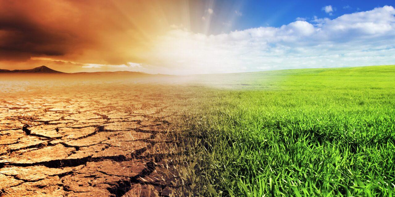 Emergenza climatica e ambientale: necessario un cambio di mentalità